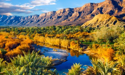 Am Eingang zur Wüste: Draa Tal