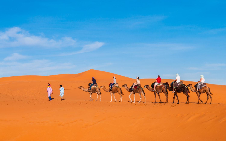 Caravan trek into desert