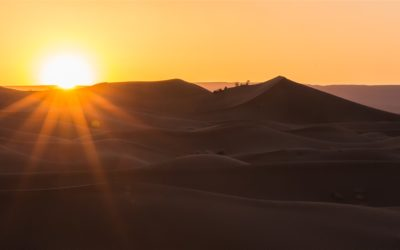 Great caravan trek into Sahara desert