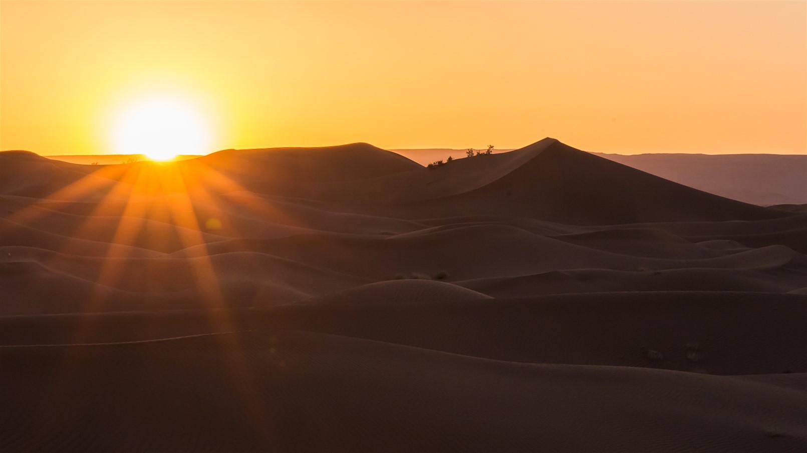 Sahara desert trekking