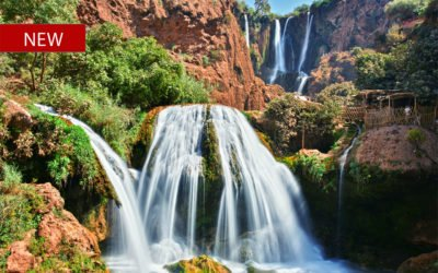 Ouzoud Waterfalls (from Marrakech)